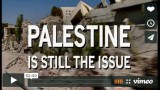 WATCH 'PALESTINE IS STILL THE ISSUE'